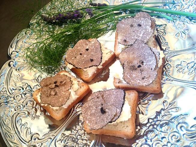 2 Days Truffle Hunting and Culinary Holidays in Provence