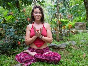 35 jours-300h de formation de professeur de yoga intensive à Puerto Viejo de Talamanca, Costa Rica