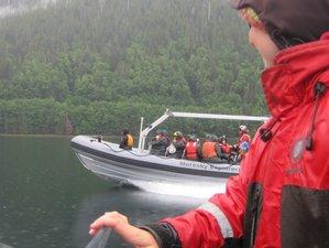 8 Day Haida Gwaii Wildlife Tour in British Columbia, Canada
