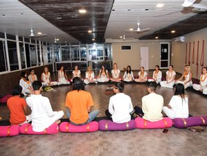 6 Day 50-Hour Hatha Yoga Teacher Training Course in Rishikesh