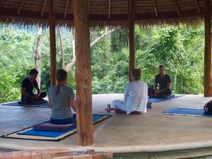5 Days Meditation and Yoga Retreat in Luang Prabang, Laos