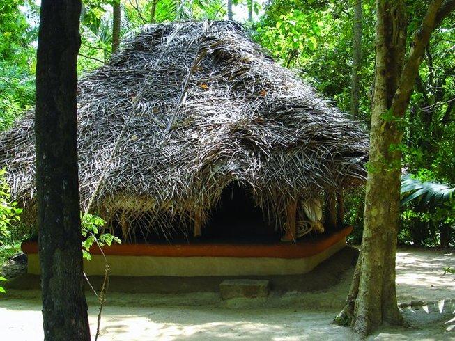 15 Days Hatha Flow Yoga Retreat in Dambulla, Sri Lanka