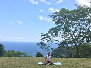 4 Tage Karibischer Yoga Urlaub in Castara, Trinidad und Tobago