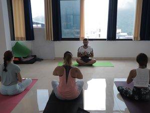 28 Days 200 Hour Hatha Yoga Teacher Training in Rishikesh, India