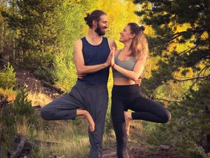 5 Day Jivamukti & Yin Yoga Retreat in a Forest in Septon-Durbuy, the Ardennes