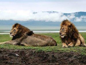 3 Days Safari in Lake Manyara, Ngorongoro, and Tarangire, Tanzania