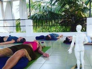 26 Day 200-Hour Yin and Yang in Balance Yoga Teacher Training, Goa