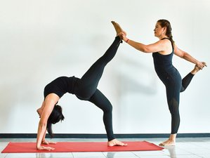 24 días, profesorado de alineación consciente, yoga Vinyasa y Restaurativo de 200 horas en línea
