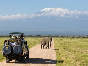 2 Days Tsavo East and Tsavo West National Park Safari in Kenya