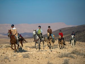 7 Days Nabatean Route Horse Riding Holiday in Negev, Israel