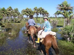 4 Day Horse Riding Holiday in Colonia Carlos Pellegrini
