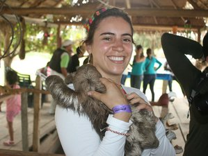 5-Daagse City Trip, Jungle Verkenning, Culturele en Wildlife Tour in Colombia en Brazilië