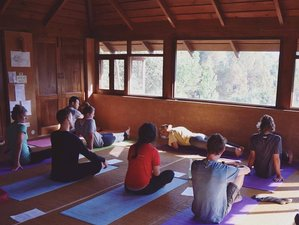 15 Days Walking and Yoga Retreat in India