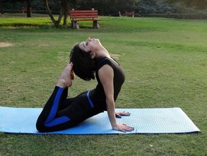 3 Days Anatomy and Physiology of Yoga Teacher Training in India