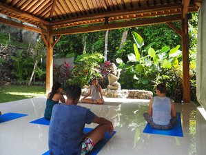 8 Day Family Surf and Yoga Holiday in Canggu, Bali