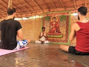 7 Day Yoga Retreat for Beginners in Palolem, Beach Goa