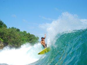 8 Days Affordable Surf Camp in Santa Teresa, Costa Rica