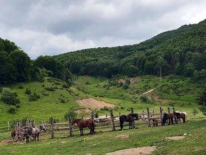 6 Days Bucephalus Trails Horse Riding Tour, Macedonia