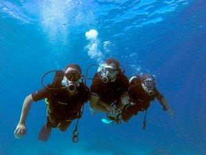 8 Day 'Explore Paradise, Explore Adventure' Mamanuca and Yasawa Islands Diving Charter in Ba