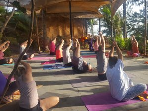 7 Day New Dawn Wellbeing and You - Fundamentals of Yoga and Meditation Course in Goa