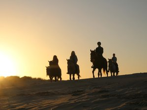 a449a08d04dd 7 Days Natural Park with Intensive Horse Riding and Yoga Retreat in  Andalusia