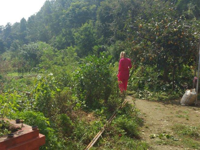 3 días de meditación y yoga Nidra en Nepal