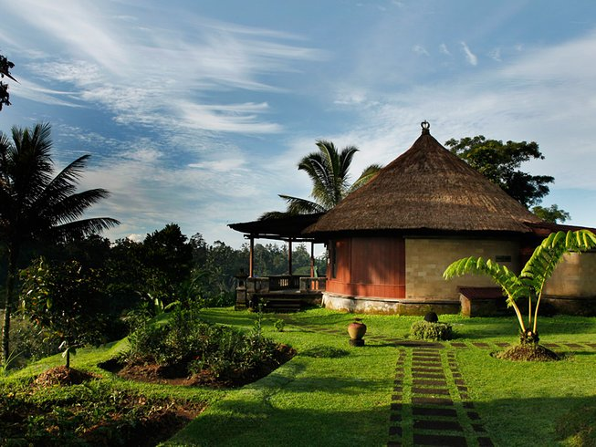 6 Days Bali Yoga Retreat in Ubud, Indonesia