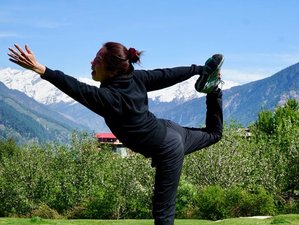 3 Day Yoga, Breathwork, and Meditation Retreat in Goa
