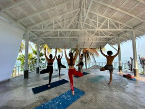 8 Day 7 Nights Rejuvenating Budget Yoga Holiday in Koh Phangan