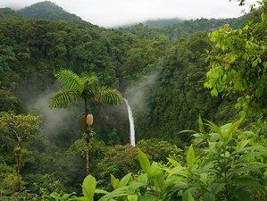 8 Days Empowerment Adventure Yoga Retreat in Costa Rica