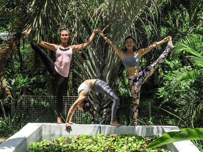 6 días retiro de yoga, meditación y detox de Año Nuevo en Ko Phangan, Tailandia