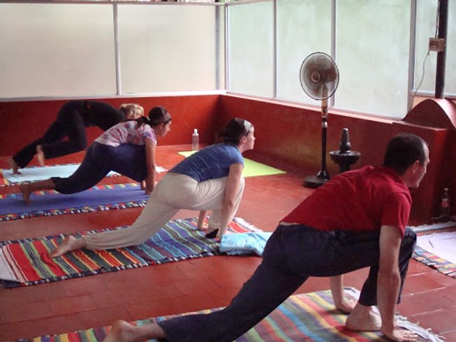 14 Days Yoga Teacher Training in Kerala, India