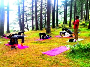15 Days Meditation and Yoga Retreat Himalayas, India
