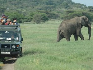 4 Days Boat Trip, Walking Trip, and Car Drive Safari Selous Game Reserve, Tanzania