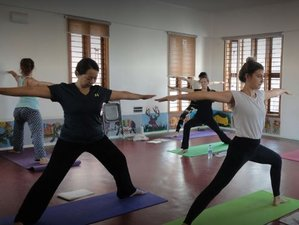 30 Days 200-Hour Yoga Teacher Training and Suspension Yoga Retreat in Mysore, India