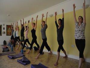 8 Days Yoga Retreat India