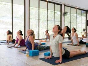 8 Days Healing Therapies and Yoga Retreat in Ko Pha Ngan, Thailand