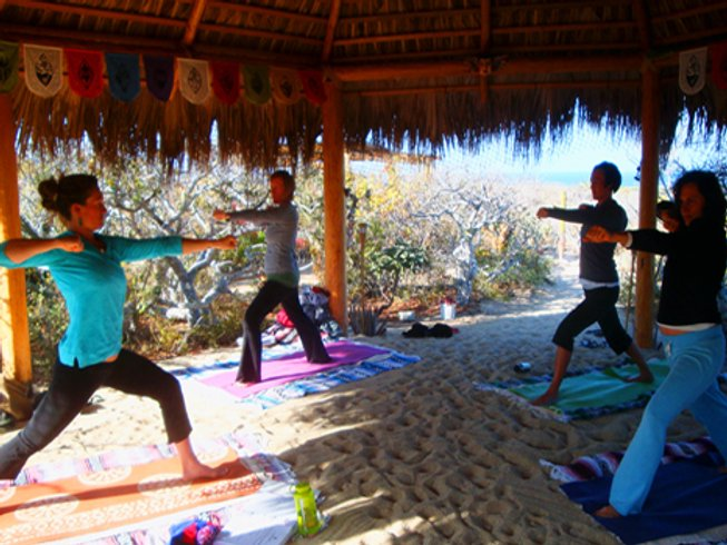13 Day 200-Hour YTT for Women in Todos Santos, Mexico