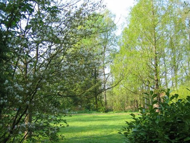 3 Days Weekend Iyengar Yoga Retreat Veluwe, Netherlands