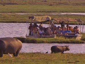 5 Days Private African Safari in Botswana and Zimbabwe