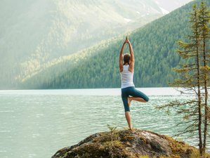 4 jours en stage de yoga et randonnée pour prendre un bol d'air à Le Bonhomme, massif des Vosges