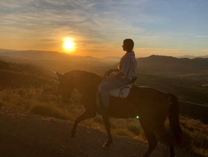 4 Day Horse Riding Holidays in Sierra de las Nieves Natural Park, Andalusia