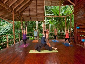 20 Days Level 1 Yoga Teacher Training in Costa Rica