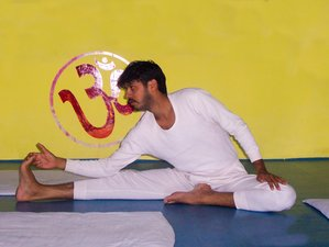 14 Day Level 2 Online Yoga Course with Practical Training, Philosophy and Discourse
