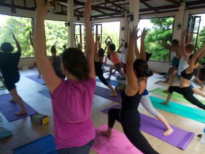 27 Days 200-Hours Yoga Teacher Training Thailand