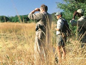 14 Days Wildlife Tours and Safari South Africa