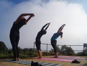 12 Day Mountain Trek, Tigers Safari, and Yoga Retreat in Nepal