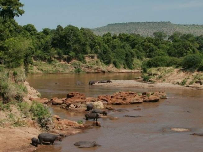 3 Days Wildebeest Migration Safari in Kenya