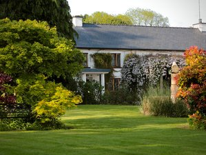 "8 Day ""Food is Medicine"" Program and Yoga Holiday in New Ross, County Wexford"