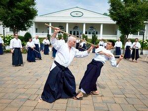 1 Week Aikido Summer Camp in New Jersey, USA